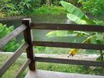 Balcony Bungalow Semilir