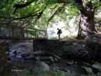 excursion por el rio
