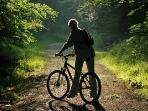 Cycling trails nearby