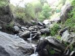 detalle del rio