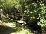 puente en el camino de los molinos
