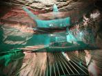 Bounce below is set in a disused slate cavern - 10 minute drive.