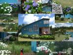 collage vistas casa y jardin