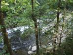 The Little Pigeon River from the deck