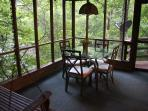 Screened in porch, porch swing and breakfast table overlooking the Pigeon River