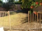 Big and private back yard with lawn area and fruit trees.