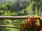 Beautiful views from the back deck overlooking the garden and surrounding jungle.