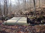 Bridge on Main Trail