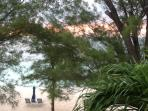 View from HoneyMoon Haven directly to the turquoise waters ofthe Caribbean just beyond our tree line