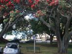 local park (6 mins walk)