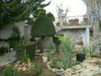 Beautiful garden arround