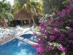 A view of the pools and the palapa roofed patio from upstairs