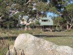 The 'Home Among the Gum Trees'