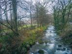 The shallow River Cader runs close to the cottage and provides fun all year round