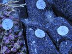 Les Terrasses - Gordes : market - lavander