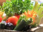 Les Terrasses - Gordes : market - vegetables