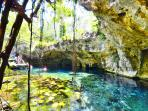 Between 5 and 30 away you will find the main touristic attractions: Cenotes, Maya ruins, villages..