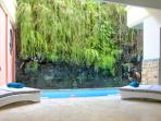 Tropical plant wall beside pool