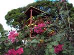 le bungalow Pitaya - surface 108 m² - 3 pièces et 3 grandes terrasses avec une superbe vue sur mer