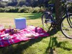 Borrow a bicycle and enjoy a picnic whilst out cycling