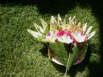 Balinese offering 'Canang Sari'