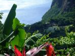 Pitons viewed from the Ladera Hotel