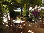 Grape covered terrace