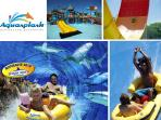 Aquasplash is the largest aquatic park in the Alpes-Maritimes. 22 big slides