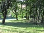 Vue du parc et des bois de chêne