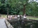 Le charme du bassin d'eau de source