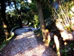 Sacred Mountains - many marked paths, following in footsteps of  St Francis and Michelangelo