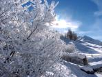 Livigno Winter