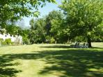The lawn and shade trees, taken from the meadow
