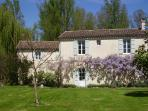 Mill cottage entrance from the garden in springtime. Wisteria in blossom