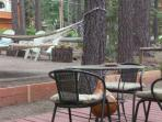 Another back yard nook - Bistro Table & chairs