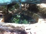 Semi Natural pool in dry creek in back jungle only from dec till April