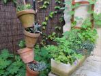 A l'entrée du gîte : structure pots de plantes succulentes