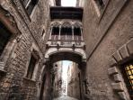 Gothic Quarter, just 10 minutes walking from the apartment