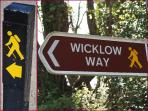 The famous 'Wicklow Way' finishes in the village of Clonegal 2km from the holiday home.