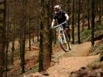The Tamar Valley has a superb network of walking and cycling trails