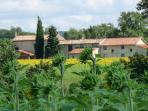 En Rouger property nested in sunflower countryside
