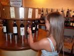 wine tasting greve in chianti