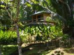 Villa Colibri is a private enclave overlooking the union of the Ballena & Uvita rivers.