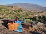 With over a hectare of olive and almond groves theres plenty of space for a picnic with a view.