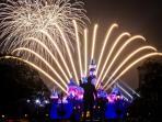 Disneyland fireworks - nightly for summer/holiday, weekends year round.