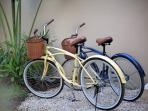 Cycle to the center to eat some delicious Tacos, do some shopping or go out for dinner in the city
