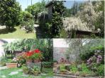 Villa Firefly garden
