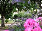 Pretty communal gardens.  We have cherries, apples, grapes and figs.  Help yourself; when in season