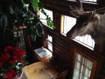 Log cabin Home vacation of Flagstaff, AZ