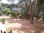 private fanced garden
